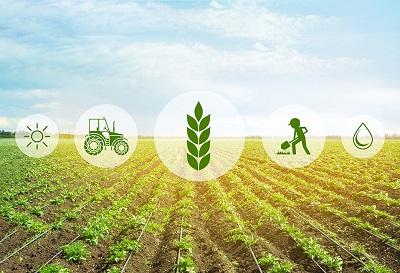 مشاوره کشاورزی