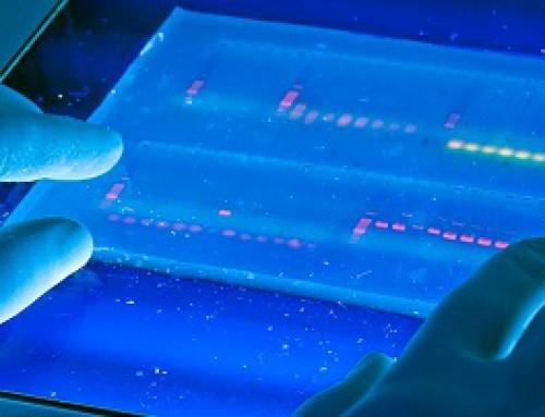 جداسازی DNA و RNA