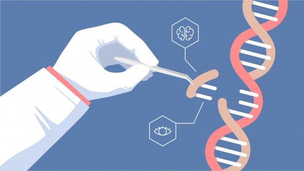 انتقال ژن