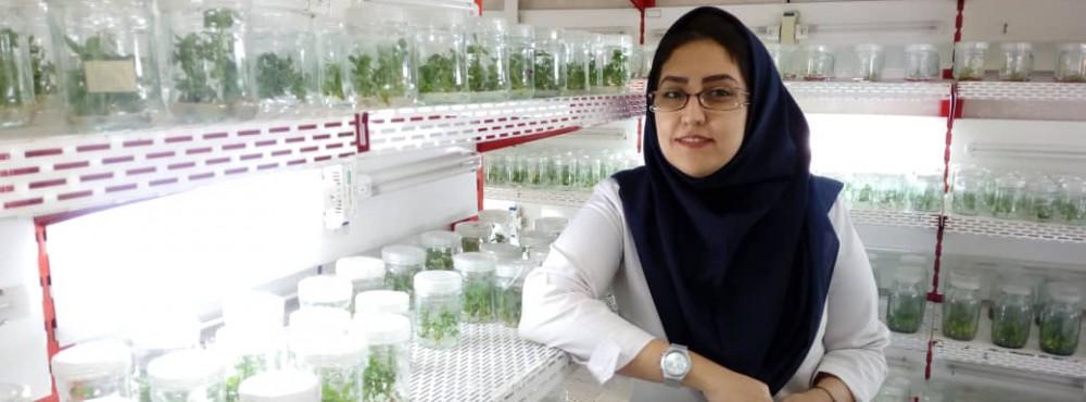 Reyhaneh SAdeghi